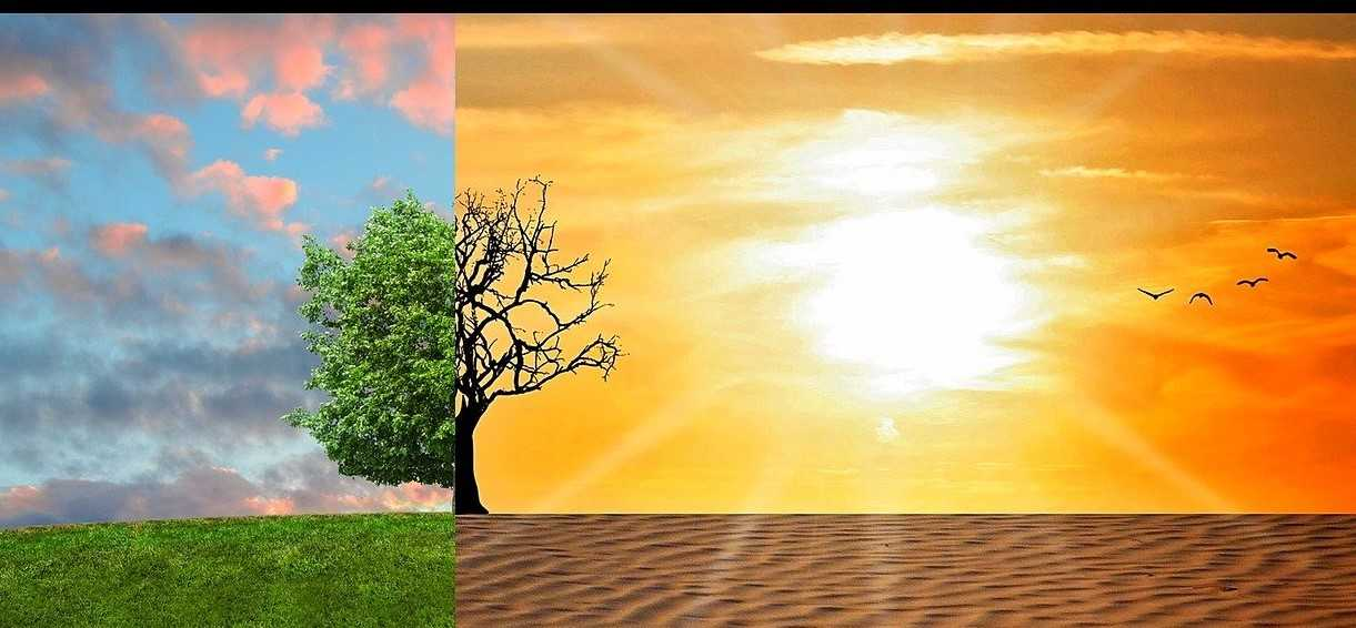 Global warming: a digital Earth to simulate it