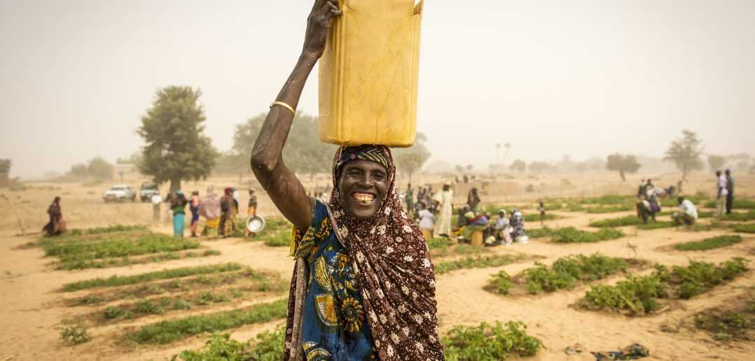 Global warming: malnutrition worsens