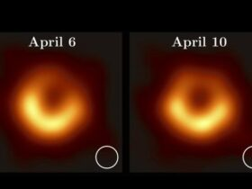 Black Hole: can we consider the image obtained as a photograph?