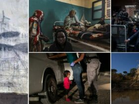 World Press Photo 2019: the analysis of the winners' shots
