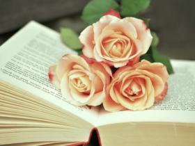 Migliori libri più venduti (Best Seller) – Classifica
