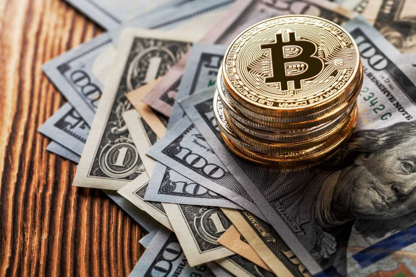 Bitcoin Profit: how does it work?