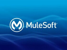 Choose Mulesoft BSE for software integration projects