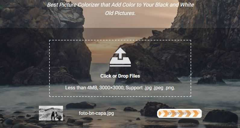 Image Colorizer Review: Colorize photos in black and white