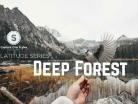 Recensione Capture One Pro Styles: Latitude, Deep Forest