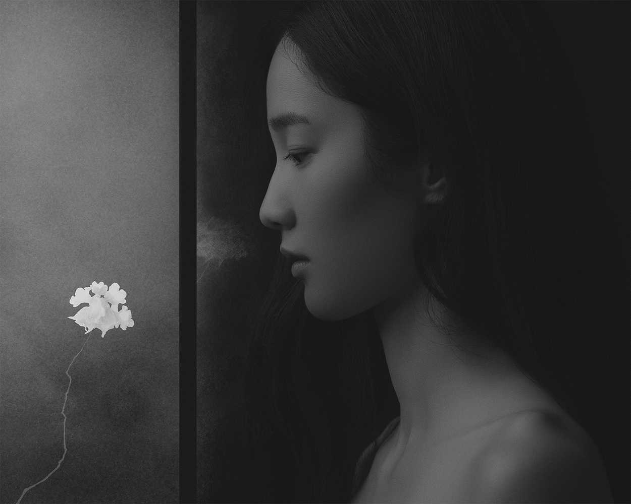 The visual power in the fusion of photography and painting |  Interview with Suxing Zhang