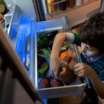 Beko: new 4-door refrigerator GN1416232ZX