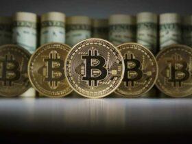 Crypto Cash Pro: come funziona?