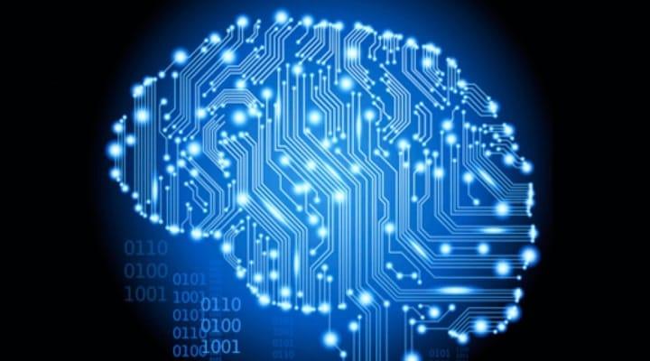 neuronal implants