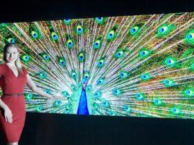 I display Micro LED di LG sono da premio thumbnail